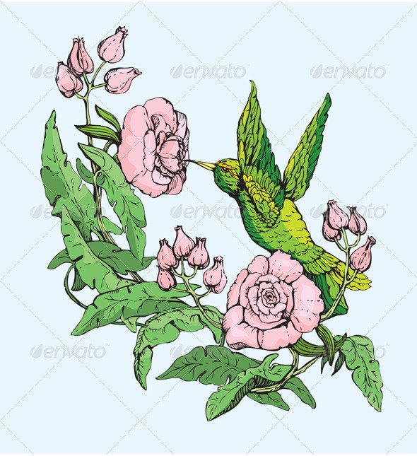 Colibri and Flowers Hand Drawn Sketch - Animals Characters