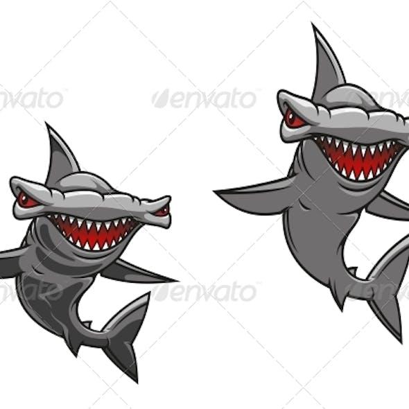 Hammer Fish Shark