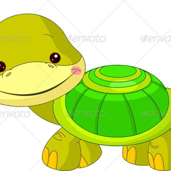 Fun Zoo Turtle