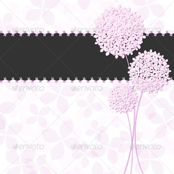 Springtime Pink Purple Hydrangea Flower