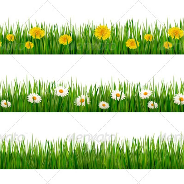 Three Nature Backgrounds of Green Grass