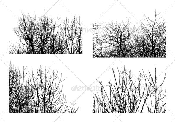 Trees - Backgrounds Decorative