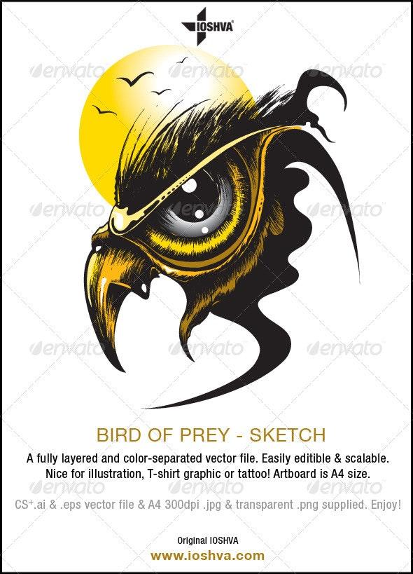 Bird of Prey V1
