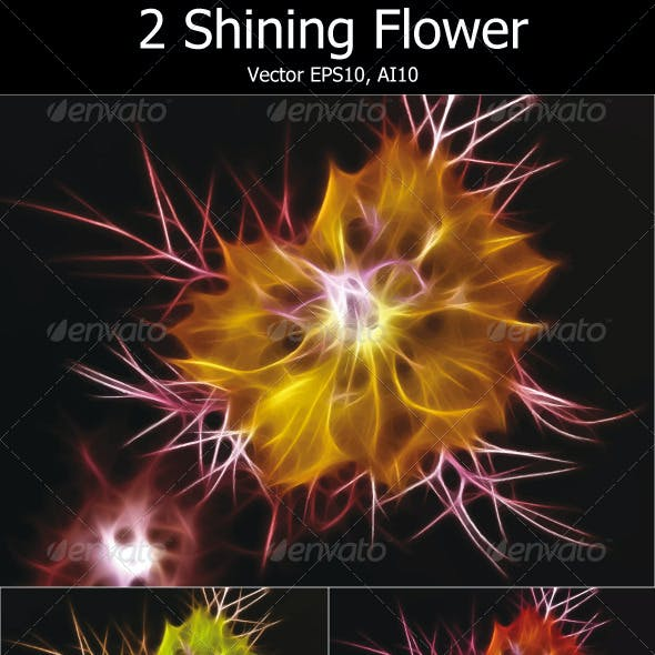 2 Shining Flowers (Vector)