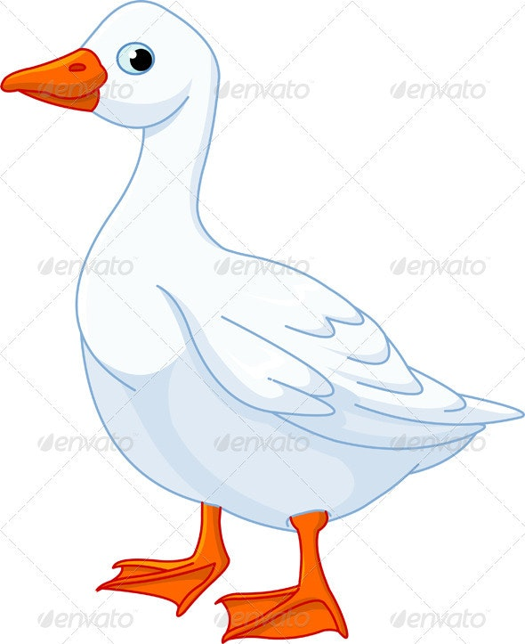 White domestic goose - Animals Characters