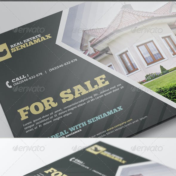 Real Estate V.3