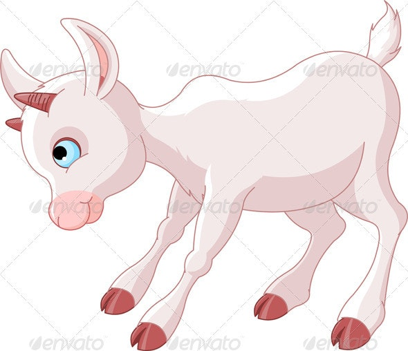 Little Baby Goat - Animals Characters