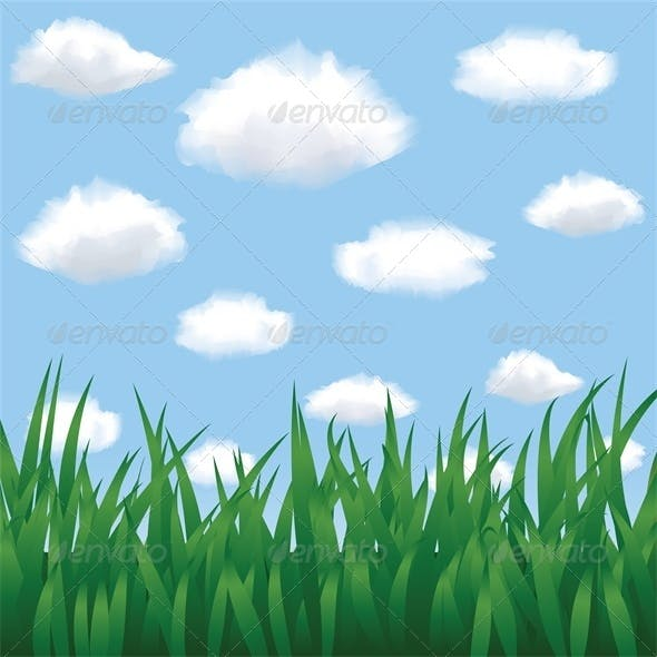 Green Grass, Blue Sky and Clouds in Summertime
