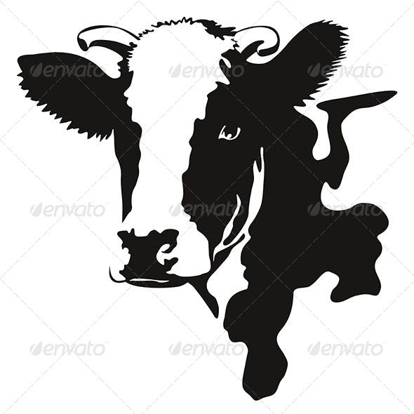 Vector Illustration of a Cow Head