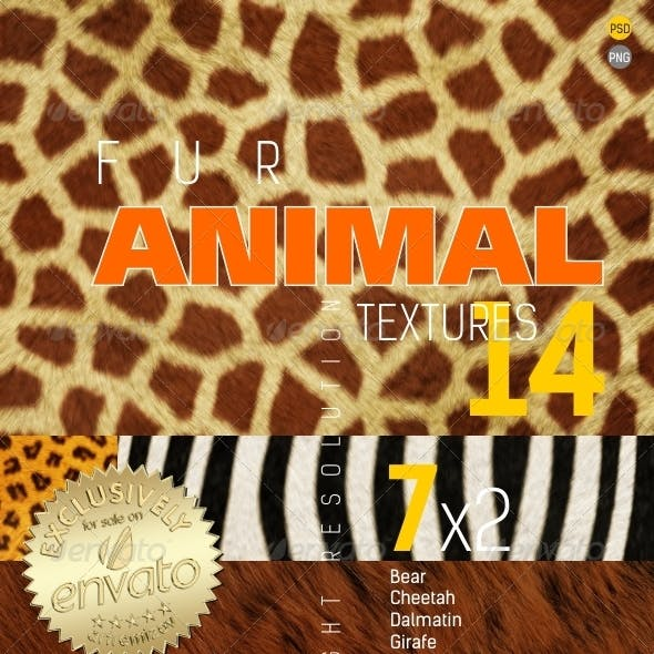 Fur Animal Texture Backgrounds