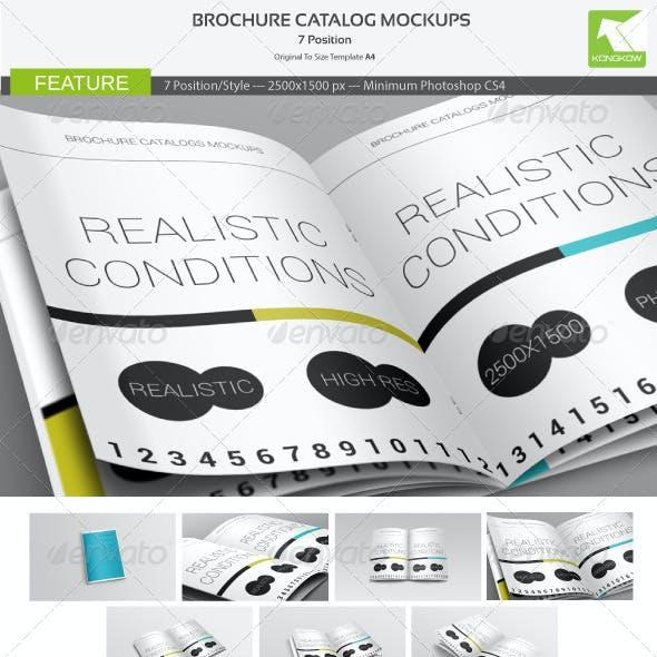 Brochure Catalog Mockups