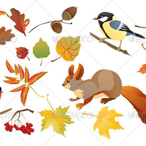 Set of Isolated Autumn Forest Leaves and Birds