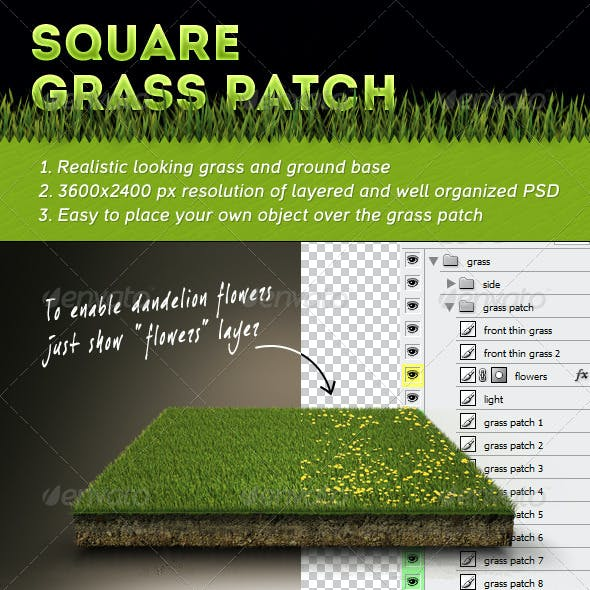 Square Grass Patch