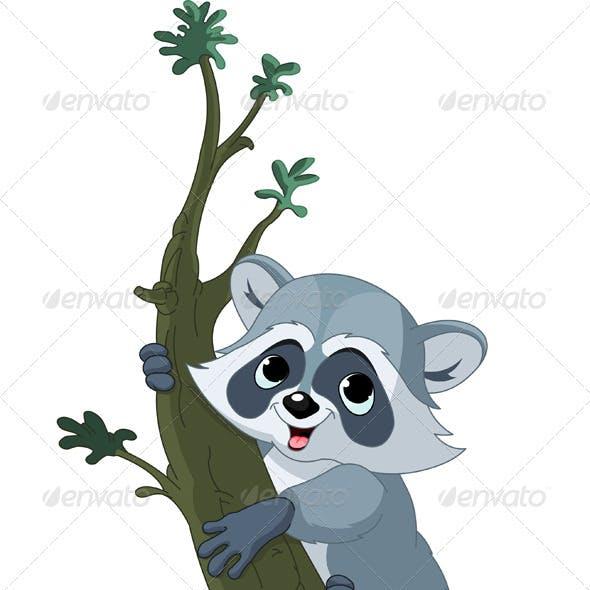 Funny cartoon raccoon on the tree
