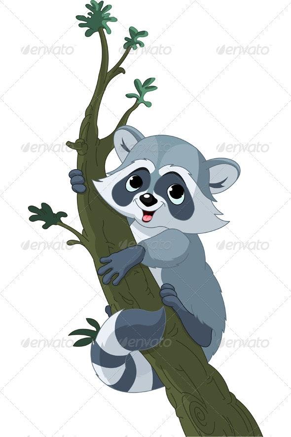 Funny cartoon raccoon on the tree - Animals Characters