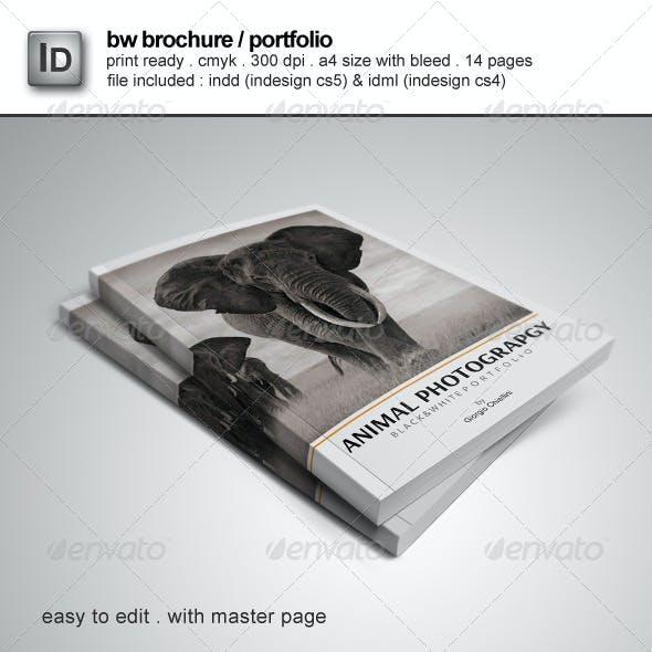 Brochure / Portfolio Template