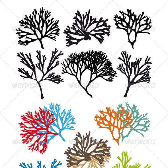 Corals Reefs Vector Set