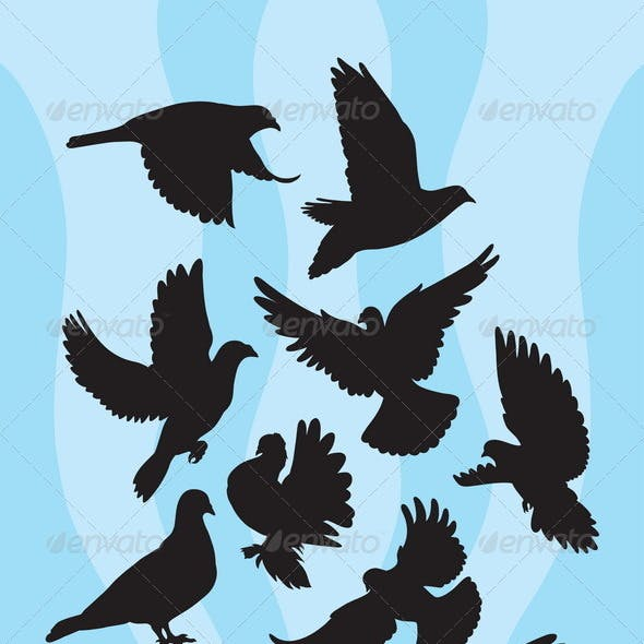 Dove or Pigeon Silhouettes