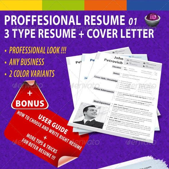 GD Professional Resume Set 01