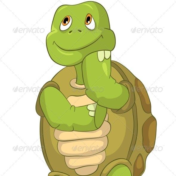 Turtle Thinking