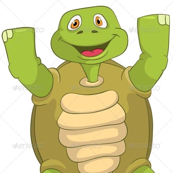 Turtle Winner