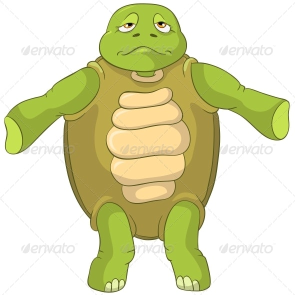 Turtle. Confusion. - Animals Characters