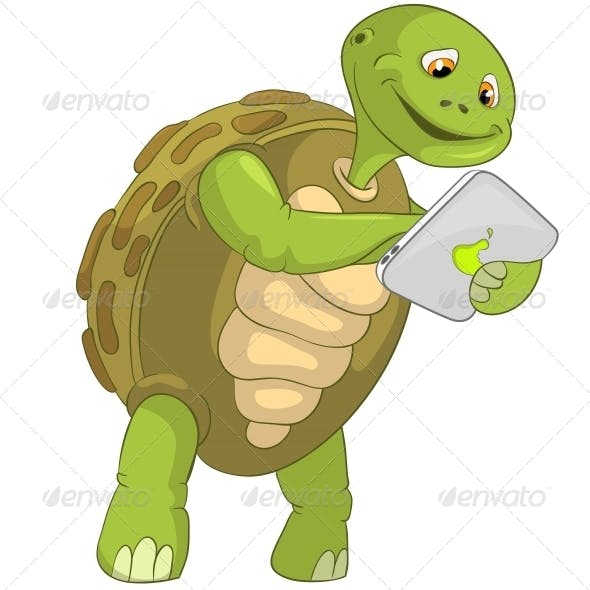 Turtle. Touch Screen.