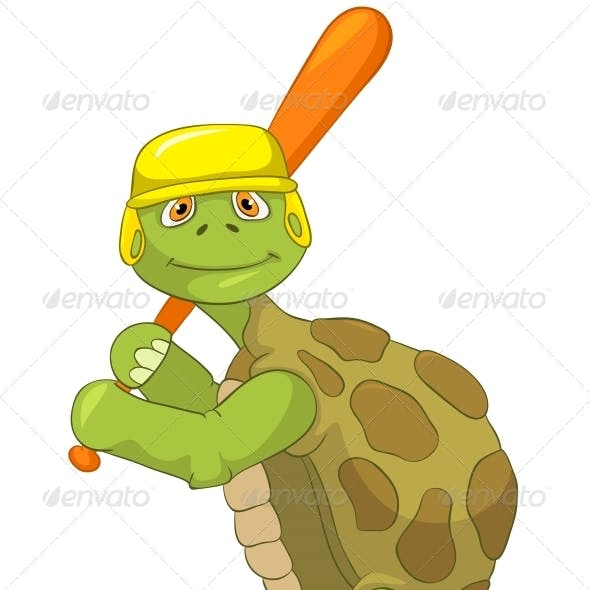 Turtle. Baseball Player.