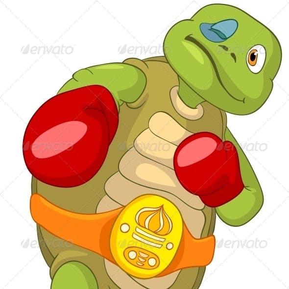 Turtle. Boxer.