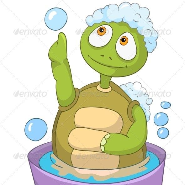 Turtle. Baby Washing