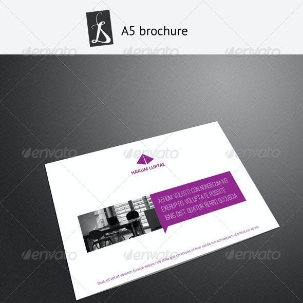 A5 Brochure 8
