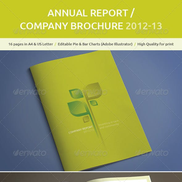 A4 Annual Report / Company Brochure