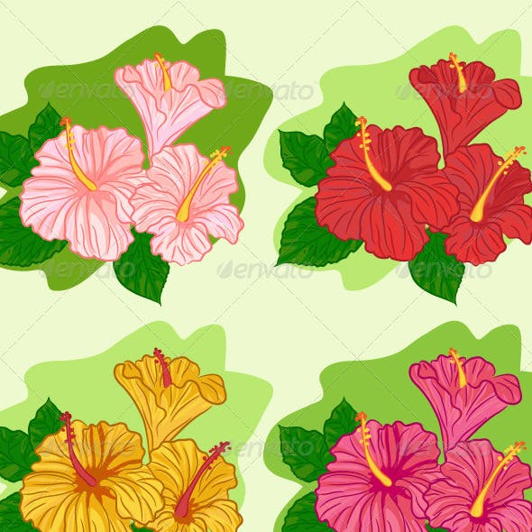 Set of Colored Hibiscus