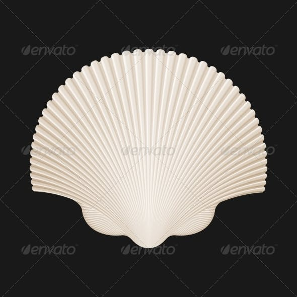 Brown Scallop Shell