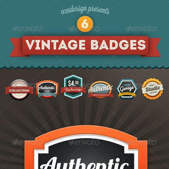 Colorful Vintage Retro Badges