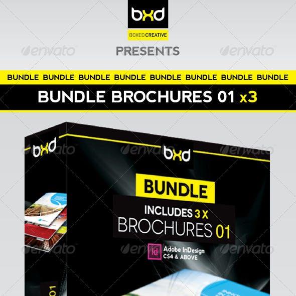 Brochures Bundle - InDesign Layout 01
