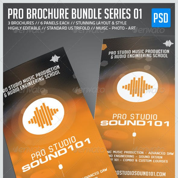 Pro Brochure Bundle - Music, Photo, Art Edition