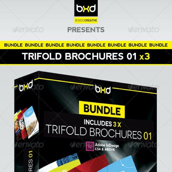 Trifold Brochures Bundle - InDesign Layout 01