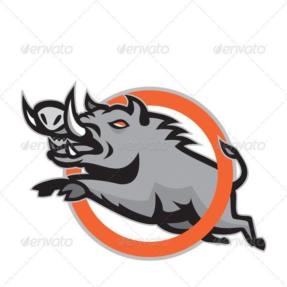 Wild Pig Boar Razorback Jumping Circle