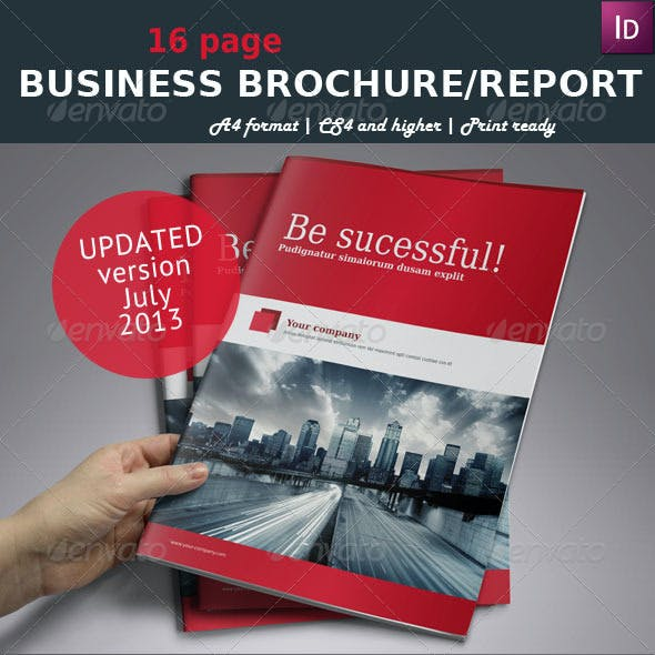Business Brochure / Report A4