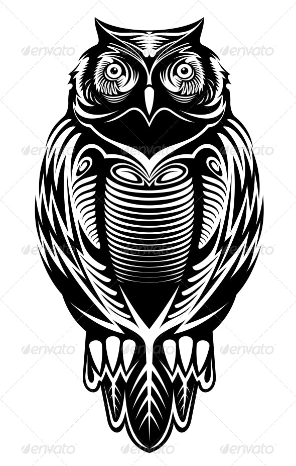Majestic Owl - Animals Characters