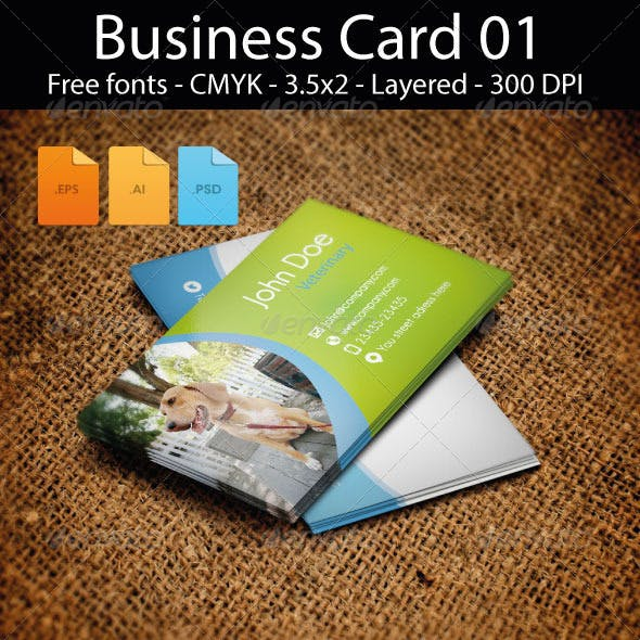 Business Card Design 01 Pets