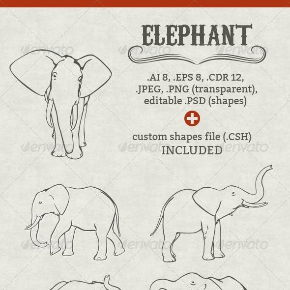 Vector Elephant Set