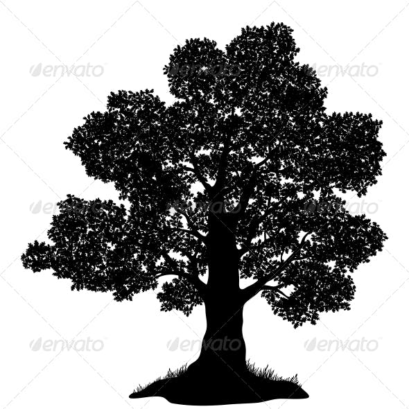 Oak Tree and Grass Silhouette