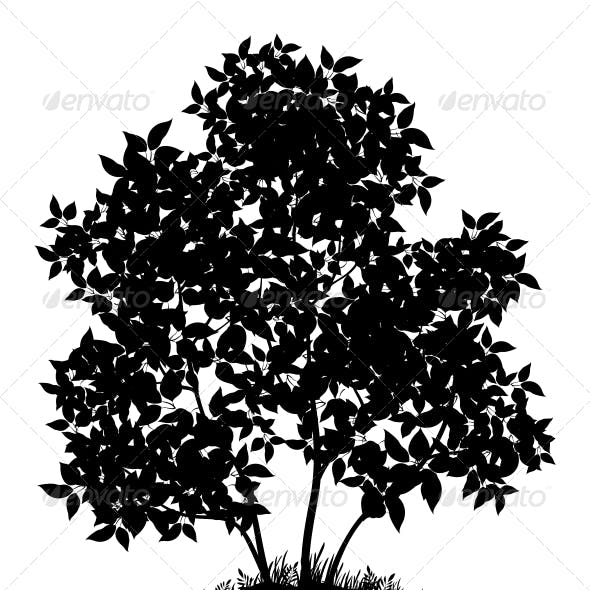 Download Lilac Tree and Grass, Silhouette