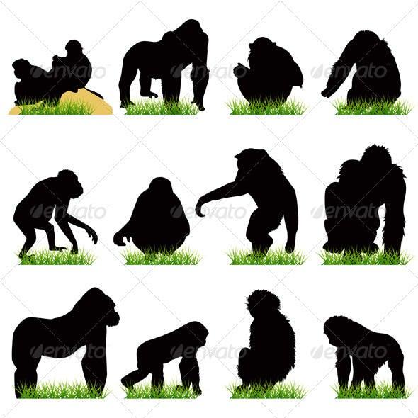 12 Monkeys Silhouettes Set