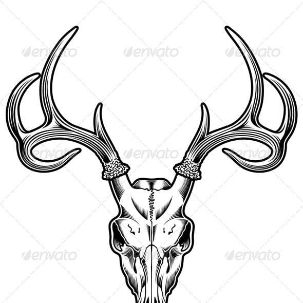 Deer Skull Vector