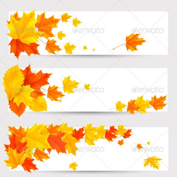 Set of Autumn Banners with Colorful Leaves