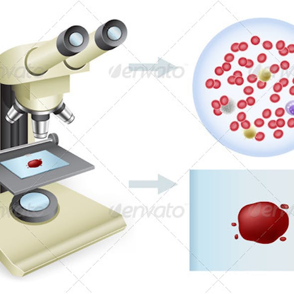 Blood under a Microscope