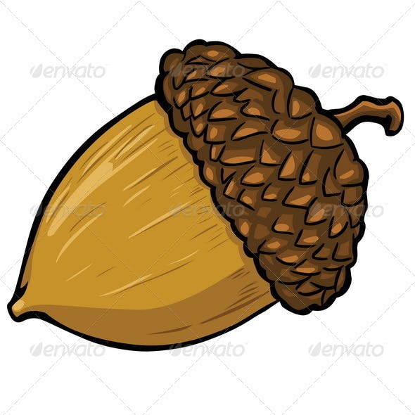 Vector Cartoon Acorn